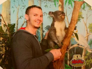 Koala Zeit